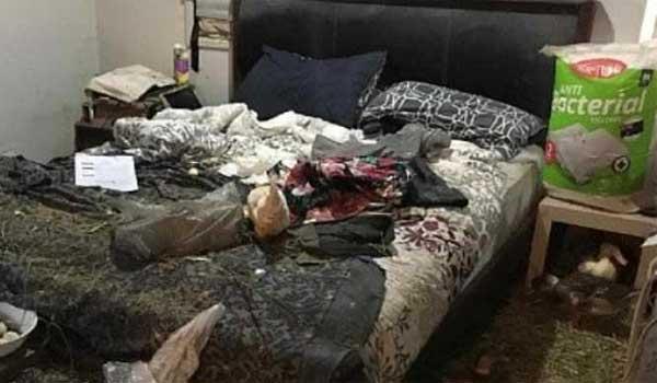 Ζούσε στο διαμέρισμά της με 34 πάπιες, κότες, γάτες, σκύλους και ένα γουρούνι!