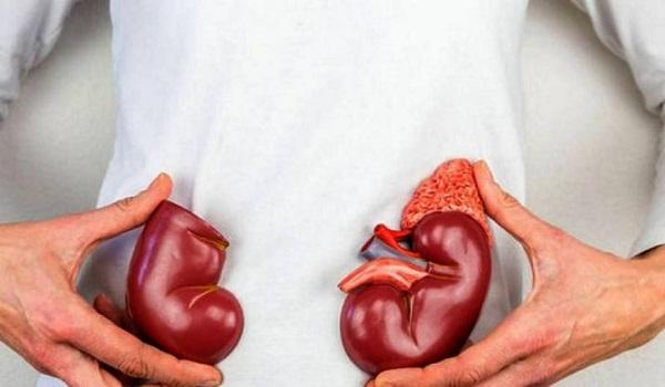Πέτρες στα νεφρά: Πώς θα φύγουν ανώδυνα