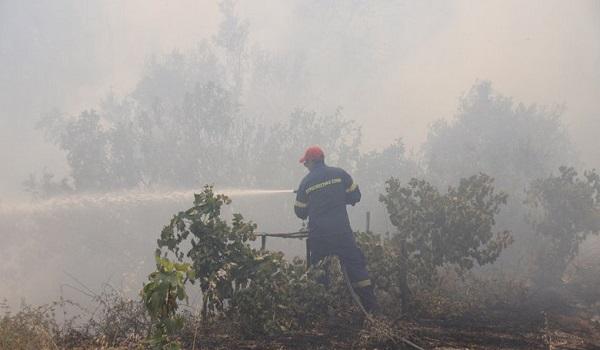 Εύβοια: Νέο πύρινο μέτωπο μεταξύ Πλατάνα και Μακρυμάλλη - Η μάχη δεν έχει τελειώσει ακόμα
