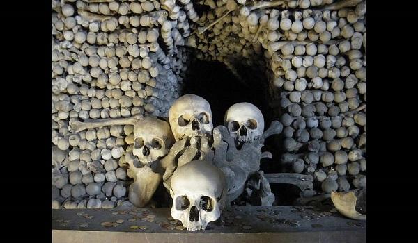 Λέσβος: Πέταξαν ανθρώπινα οστά στον δρόμο