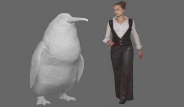 Ανακαλύφθηκε νέο είδος προϊστορικού πιγκουίνου με μέγεθος ανθρώπου