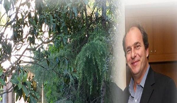 Δολοφονία Σταματιάδη: Οι φωτογραφίες του αγριογούρουνου πρόδωσαν τους δράστες