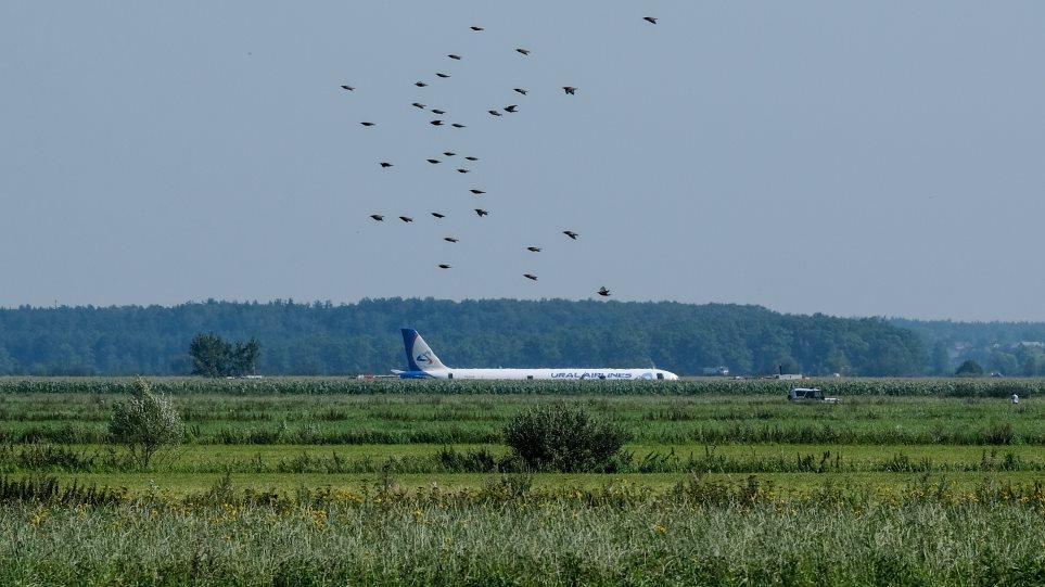 Σύγκρουση Airbus με πουλιά: Οι δραματικοί διάλογοι