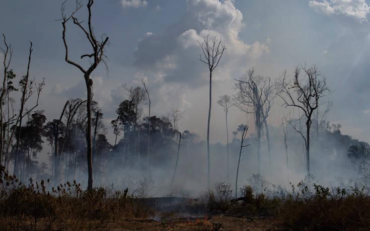 Το δεδομένο που όλοι μοιράζονται για τον Αμαζόνιο και είναι ολότελα λάθος