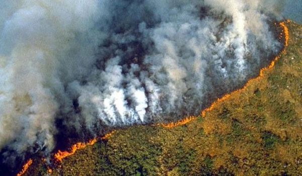 Φλέγεται ο Αμαζόνιος: Εκατοντάδες νέες δασικές πυρκαγιές