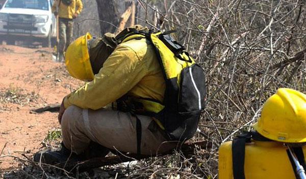 Πυρκαγιές στον Αμαζόνιο: Δύο νεκροί στη Βολιβία στη μάχη με τις φλόγες