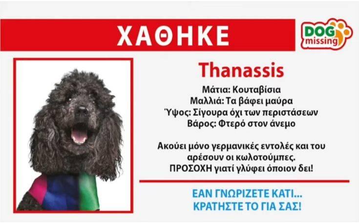 Ευρωεκλογές 2019: Χάθηκε ο Thanassis των ΑΝΕΛ, αν τον βρείτε κρατήστε τον