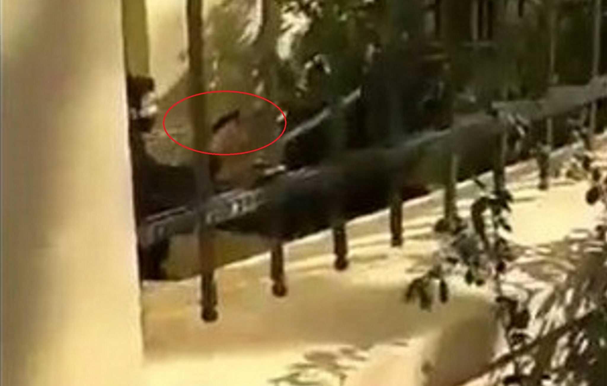 ΑΣΟΕΕ: Νέο βίντεο με τον αστυνομικό που τράβηξε όπλο