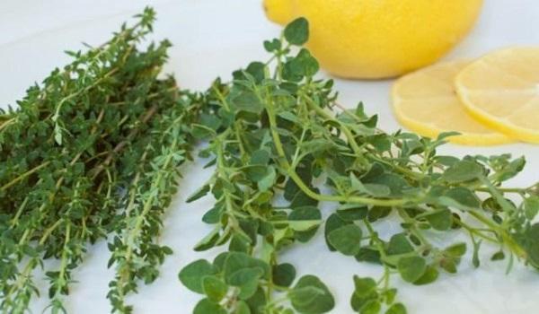 """Ουρικό οξύ: Τα βότανα που το """"διαλύουν"""""""