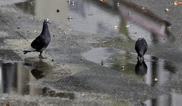 Έρχονται βροχές και καταιγίδες από το απόγευμα της Δευτέρας