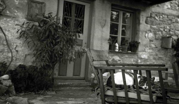 Θεσσαλονίκη: Τον σκότωσαν στην καρέκλα που καθόταν – Ανεξιχνίαστο το στυγερό έγκλημα