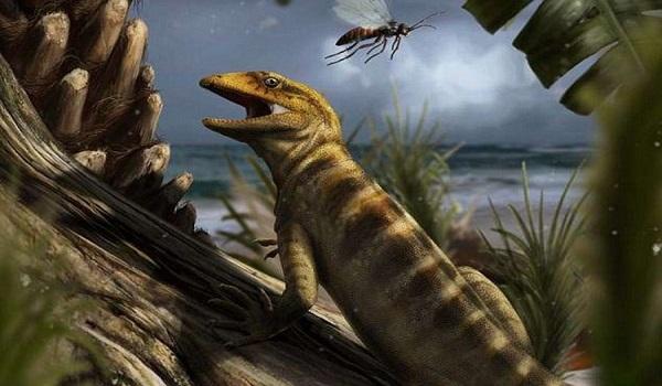 Η ανακάλυψη που αλλάζει όσα ξέραμε για την εξέλιξη στη Γη