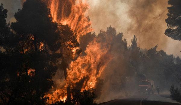Πυρκαγιά στην Εύβοια: Στο μικροσκόπιο των αρχών τρεις ύποπτοι για εμπρησμό