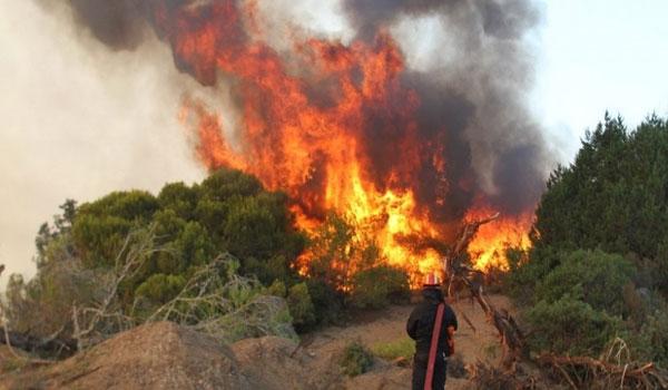 Συναγερμός στην Καλαμάτα για πυρκαγιά απέναντι από το αεροδρόμιο