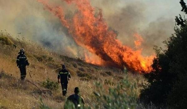 Πυροσβεστική: 24 δασικές πυρκαγιές το τελευταίο 24ωρο
