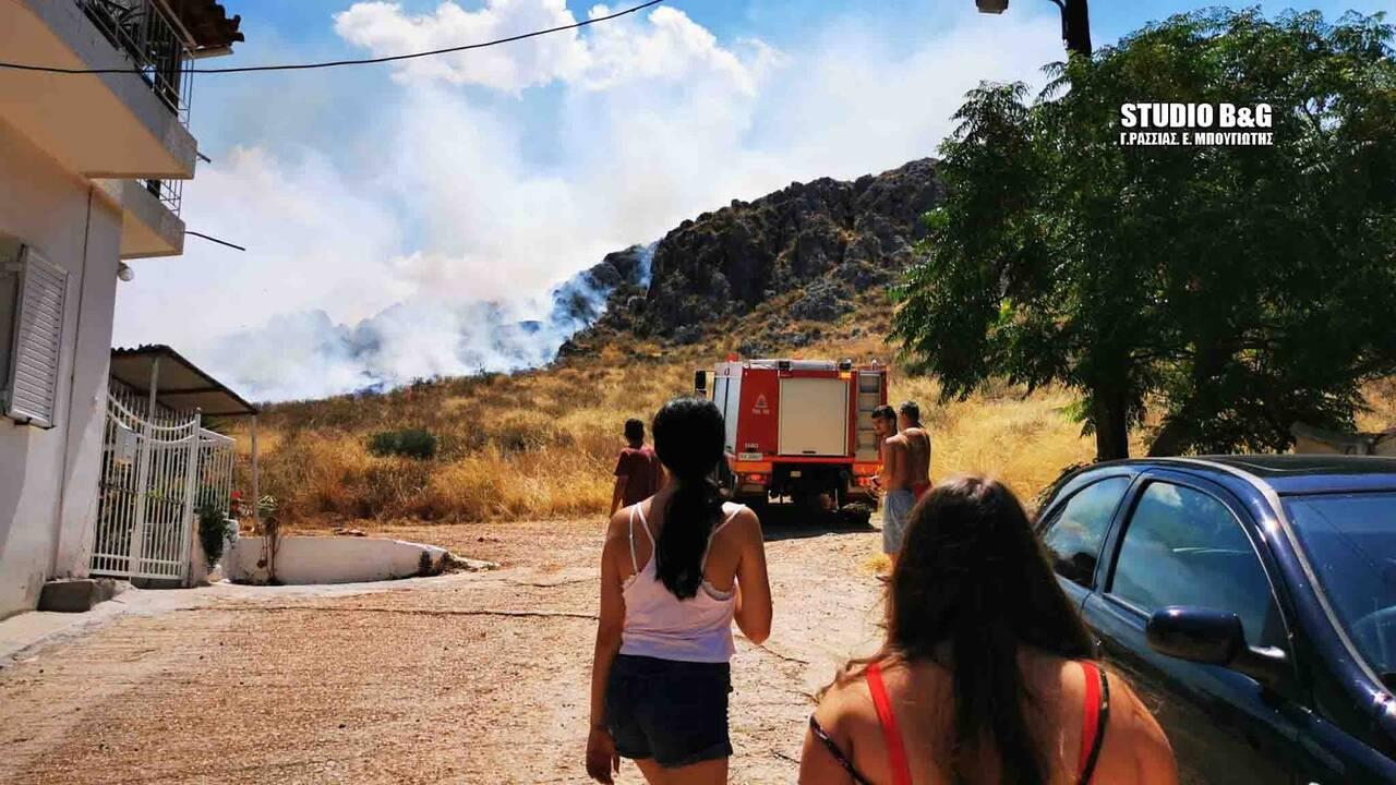 Υπό μερικό έλεγχο η πυρκαγιά στον Πρόδρομο Θήβας