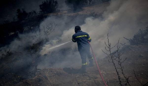 Πύρινη κόλαση στην Εύβοια:  Τέσσερα τα ενεργά μέτωπα της φωτιάς – Συνεχείς οι αναζωπυρώσεις