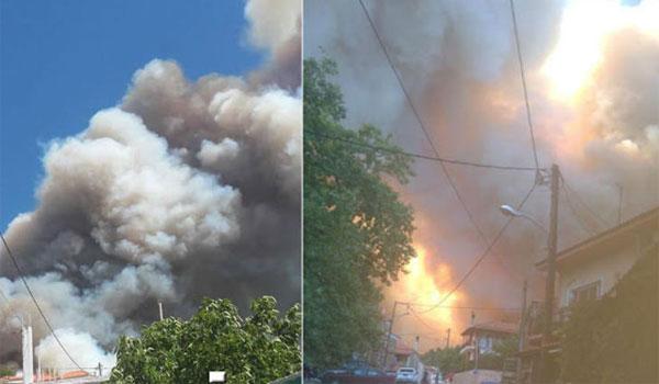 Φωτιά Εύβοια: Ενημερώνεται συνεχώς ο πρωθυπουργός. Όλη η δύναμη της πυροσβεστικής στο μέτωπο