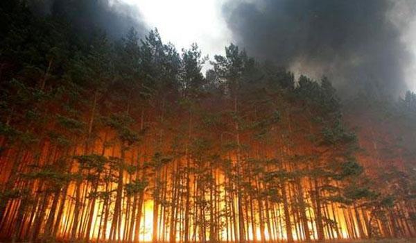 Εύβοια: Δίχως ενεργό μέτωπο η φωτιά στην Πλατάνα - Τρεις ύποπτοι για εμπρησμό