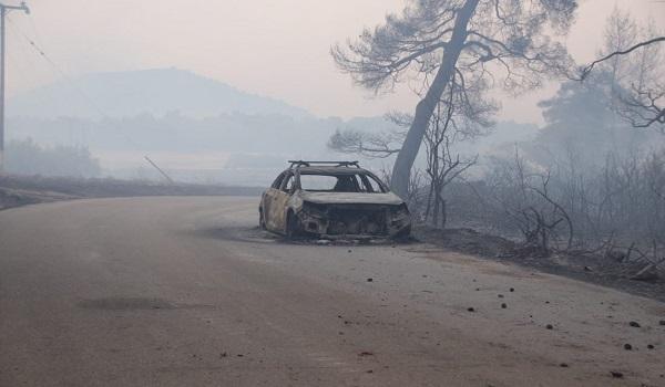 Εύβοια: Μεγάλη η καταστροφή στο παρθένο δάσος, δεν κάηκαν σπίτια