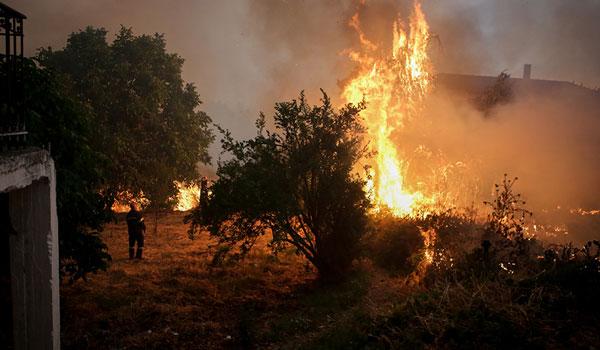 Ολονύχτια μάχη με τον πύρινο εφιάλτη στην Εύβοια - Στήνουν αντιπυρικές ζώνες