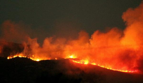 Πυρκαγιά στην Ηλεία. Καίγεται περιοχή που είχε δεντροφυτευτεί μετά τις φωτιές