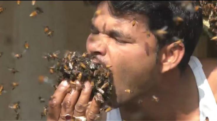 Πιάνει τις μέλισσες με τη χούφτα του και τις βάζει στο στόμα του