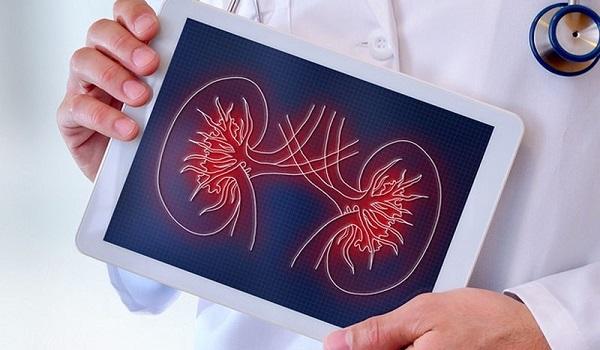 Νεφρική νόσος: Ποια σημάδια μαρτυρούν πρόβλημα στα νεφρά