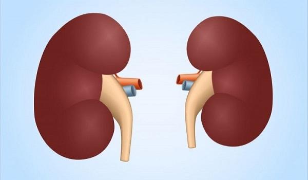 Νεφρική ανεπάρκεια: Ποια είναι τα προειδοποιητικά σημάδια