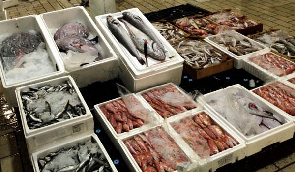 Κατασχέθηκαν πάνω από δύο τόνοι κατεψυγμένα ψάρια στον Πειραιά