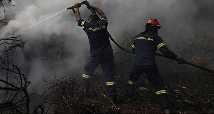 Πυρκαγιά σε δάσος στο Μεσολόγγι