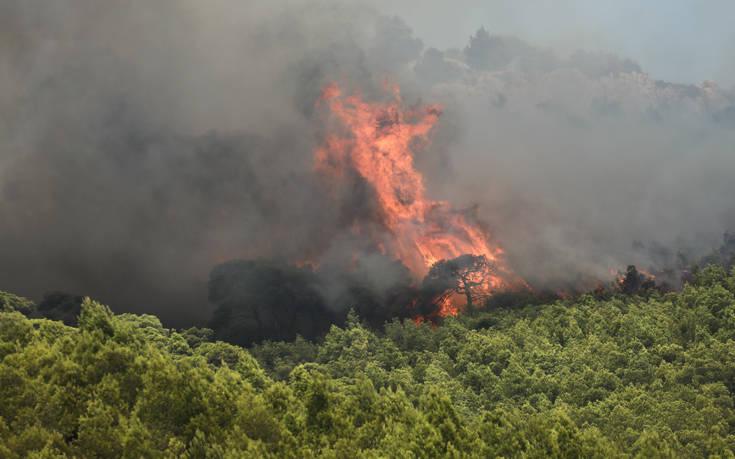 Φωτιά στη Ζάκυνθο και Λουτράκι: Καλύτερη εικόνα από το πύρινο μέτωπο, δεν απειλούνται χωριά