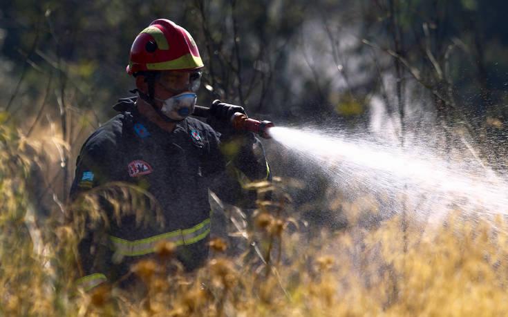 Οριοθετήθηκε η φωτιά στη Σαλαμίνα, δεν απειλήθηκε κατοικία