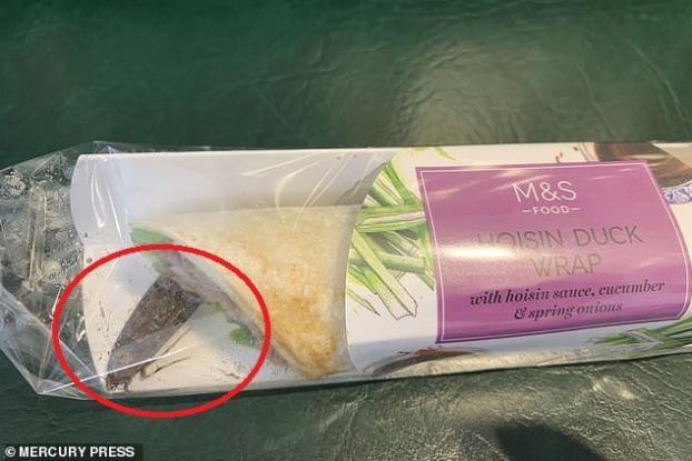 Βρήκε μέσα στο συσκευασμένο σάντουιτς που είχε αγοράσει έναν τεράστιο ζωντανό σκόρο