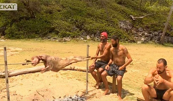 Survivor: Οι Διάσημοι σούβλισαν κατσίκι στον Άγιο Δομίνικο!