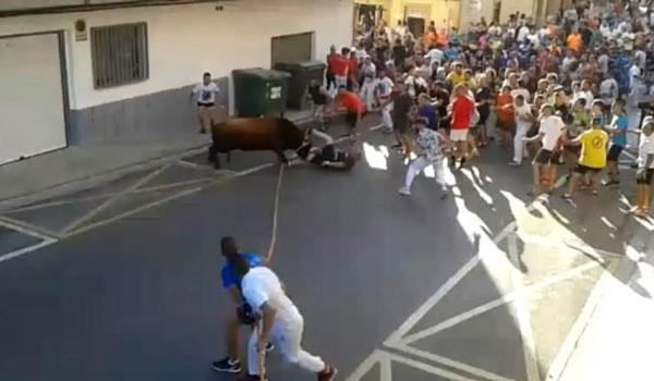 Ταύρος χτυπάει και σκοτώνει άντρα με τα κέρατα του. Βίντεο‑σοκ