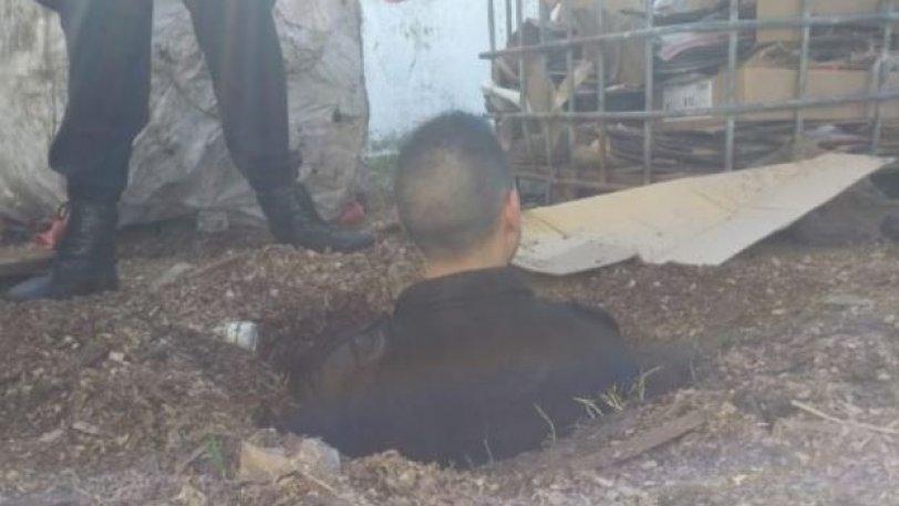 Η πιο αποτυχημένη απόδραση: Έσκαψαν τούνελ αλλά βγήκαν στο χώρο των σκυλιών Κ9