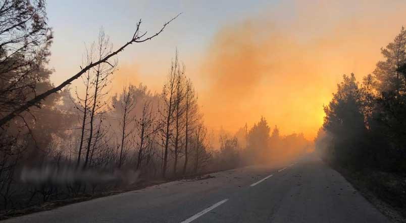 Εκτός ελέγχου η φωτιά στη Χαλκιδική. Χωρίς ρεύμα και τηλέφωνο οικισμοί, κλειστοί δρόμοι. Βίντεο
