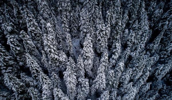 Καιρός: Παγωμένη βροχή, χιόνια και χαμηλές θερμοκρασίες