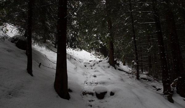 Καιρός: Χριστούγεννα με χιόνια και κρύο