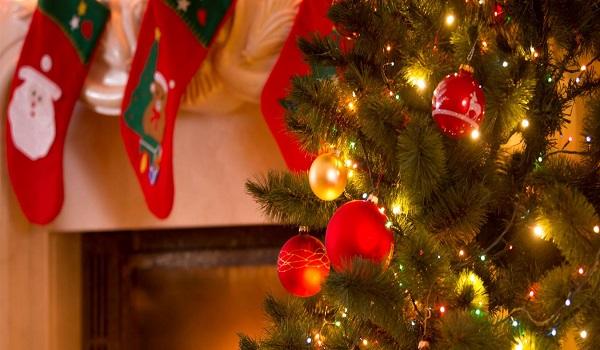 Γιορτάζουμε καταστρέφοντας - Αντιπεριβαλλοντικός ο τρόπος εορτασμού των Χριστουγέννων σε Ελλάδα και Δύση