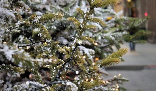 Με βοριάδες και κρύο τα Χριστούγεννα